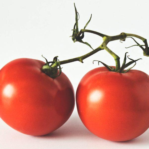 close-up-delicious-farming-1447297.jpg